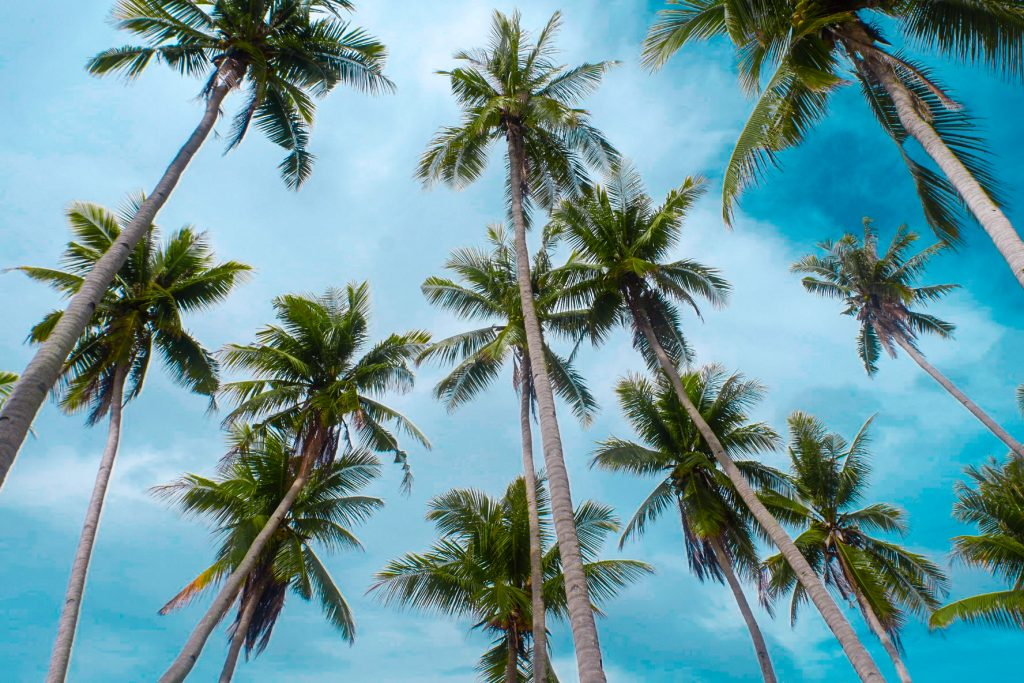 "ALT=""siquijor travel guide and paliton beach"""