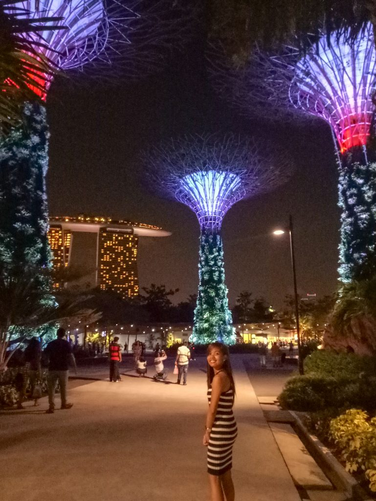 "ALT=""singapore travel guide gardens by the bay"""