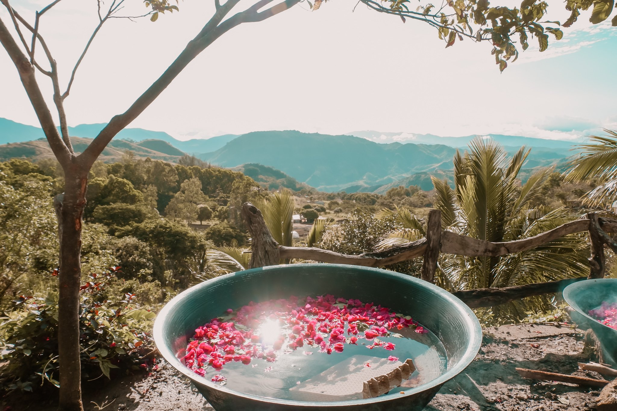"ALT=""el patio razon having flowers in the kawa hot bath"""