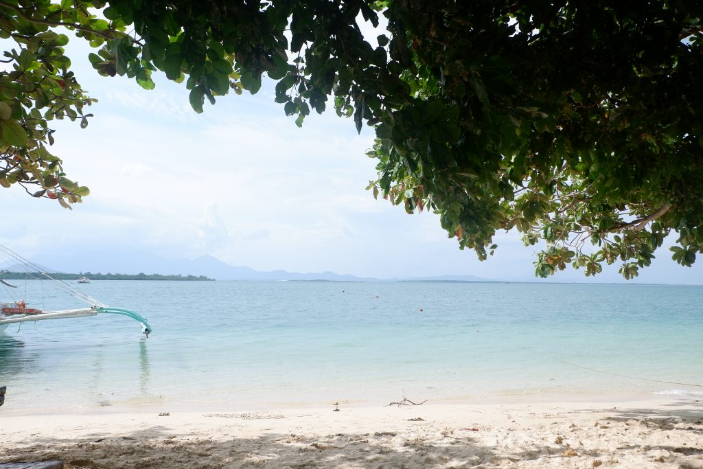 "ALT=""cowrie island palawan honday bay"""