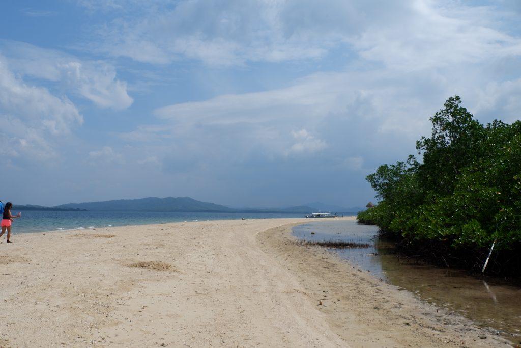 "ALT=""honda bay palawan starfish island puerto princesa"""