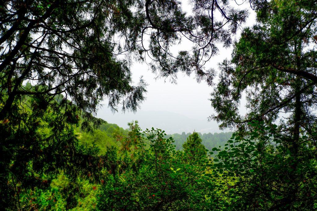 """ALT=""""go hiking at fragrant hills beijing"""""""