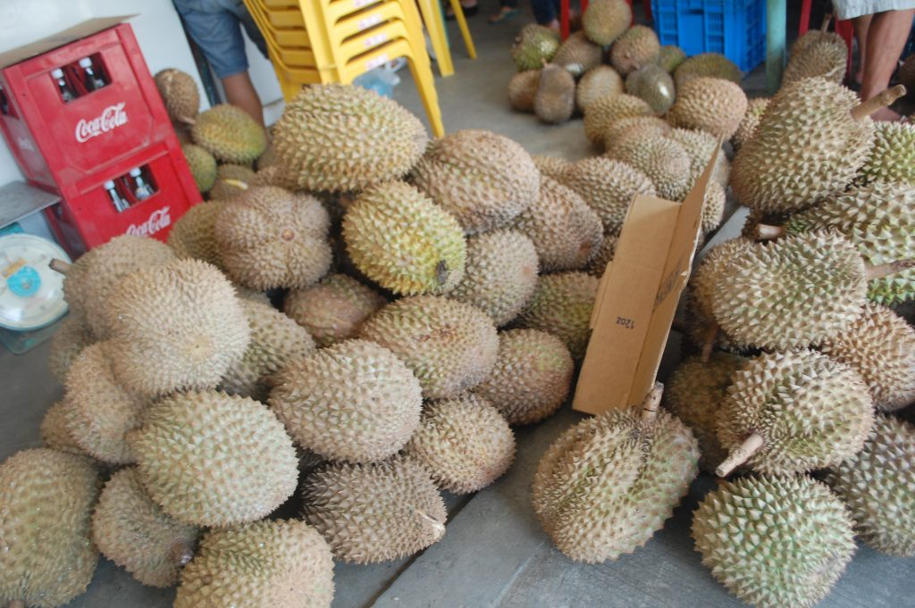 "ALT=""durian davao del sur food"""