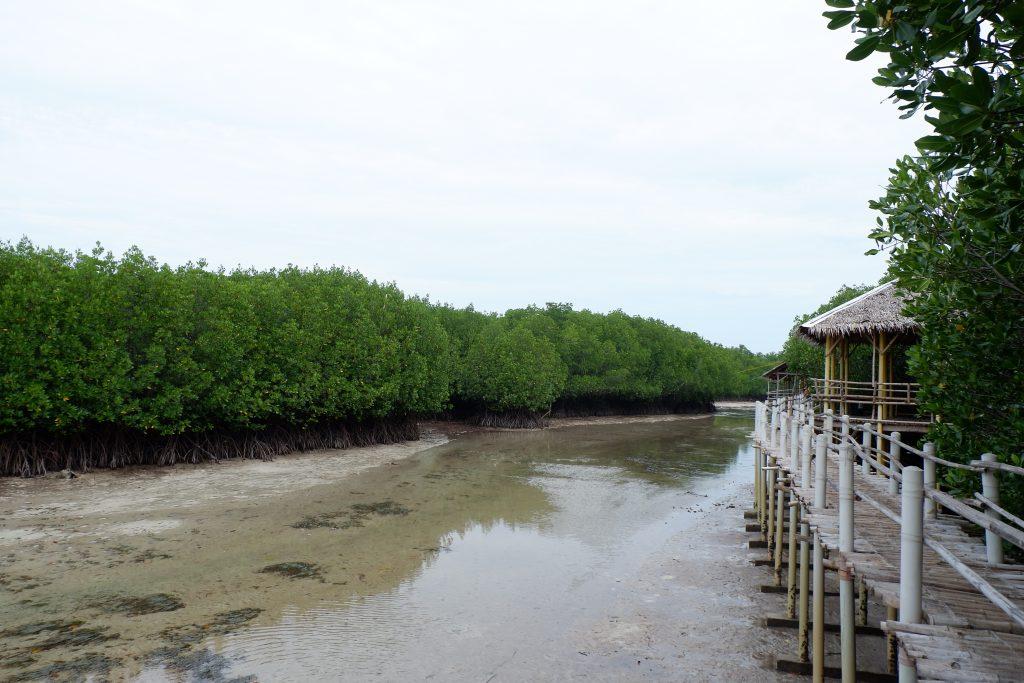 "ALT=""cebu bohol diy itinerary bantayan island"""