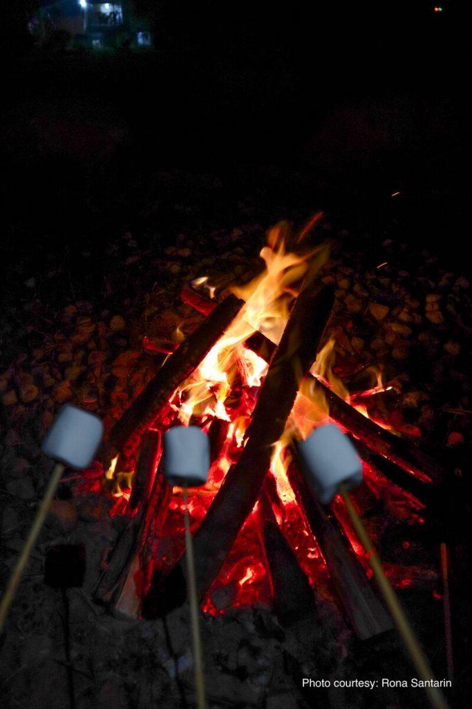 bonfire at the farmshare laguna