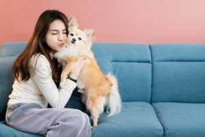 Bonding With Your Fur Baby During the COVID-19 Pandemic